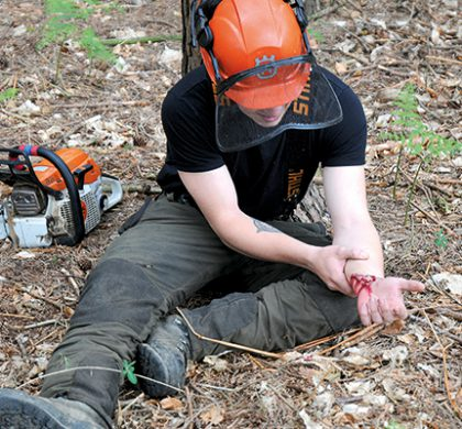 Forestry First Aid (+F) for instructors