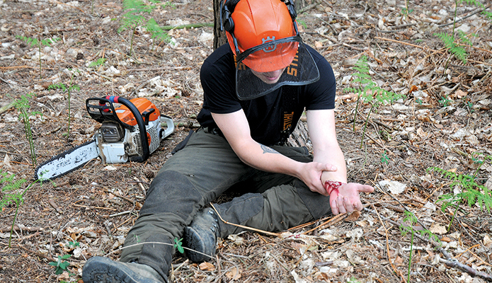 Forestry First Aid (+F) for instructors | Nuco Training