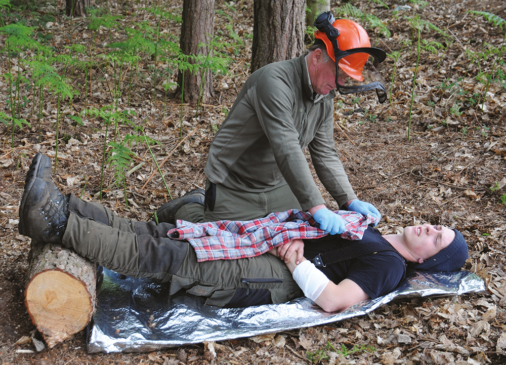 forestry first aid treatment